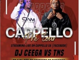 DOWNLOAD MP3 TNS – Cappello Pre Tour Mix