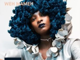 DOWNLOAD MP3 Moonchild Sanelly – Weh Mameh
